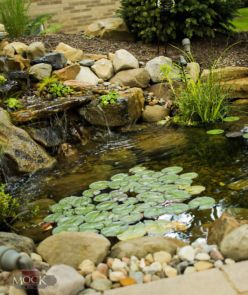 Ponds and water features mock property services for Ponds and water features