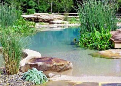 Natural_Pool_400x290